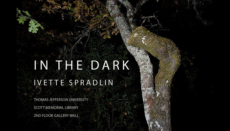 In the Dark exhibit
